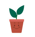 kawaii pot plant natural cartoon vector image