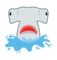 hammerhead shark with open mouth He jumps out of vector image