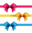 Set of gift bows with ribbons vector image