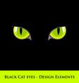 black cat eyes vector image