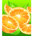 orange juice background vector image vector image