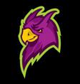 parrot head sport mascot vector image