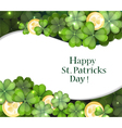 Gold coins and clover vector image