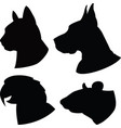 set of silhouette cat dogratparrot heads vector image