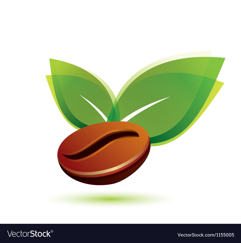 Coffee natural vector