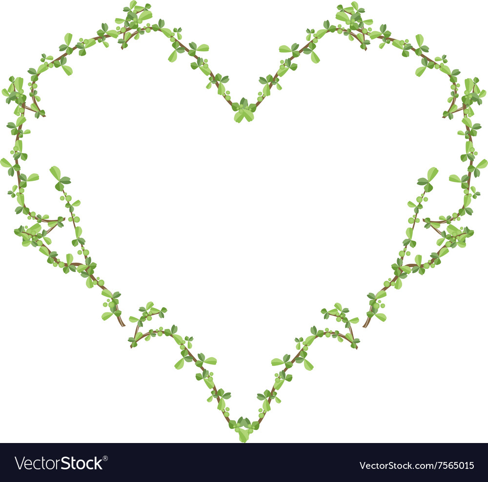 Fresh bonsai branches forming in heart shape vector