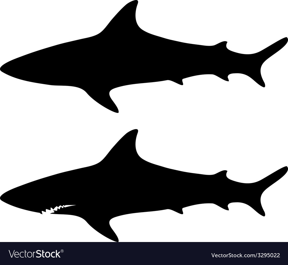 Silhouette shark set vector