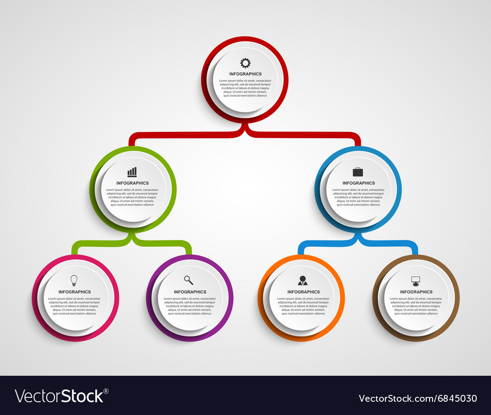 Infographic design organization chart template vector