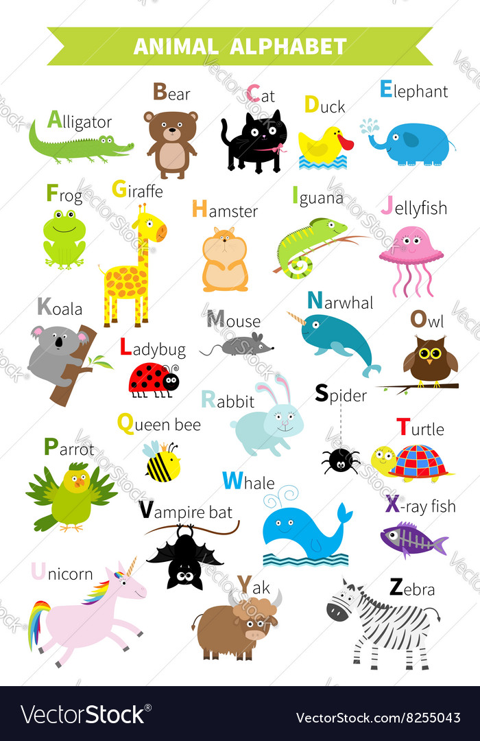 Animal zoo alphabet cute cartoon character set vector