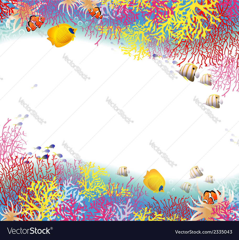 Background of coral vector