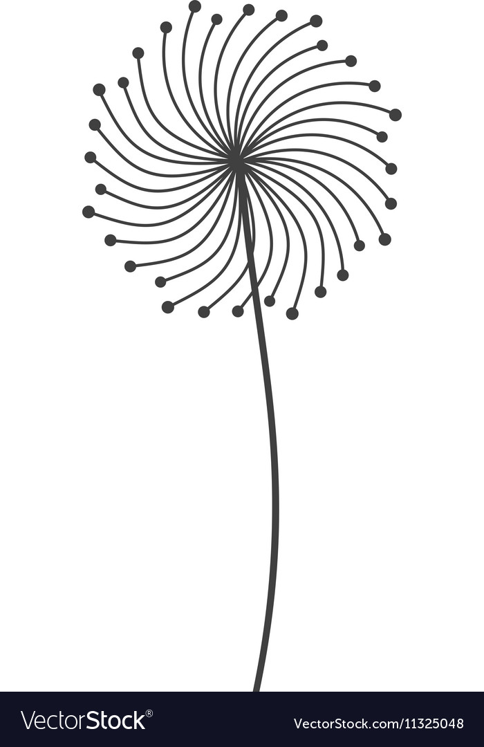 Dandelion seed decoration icon vector