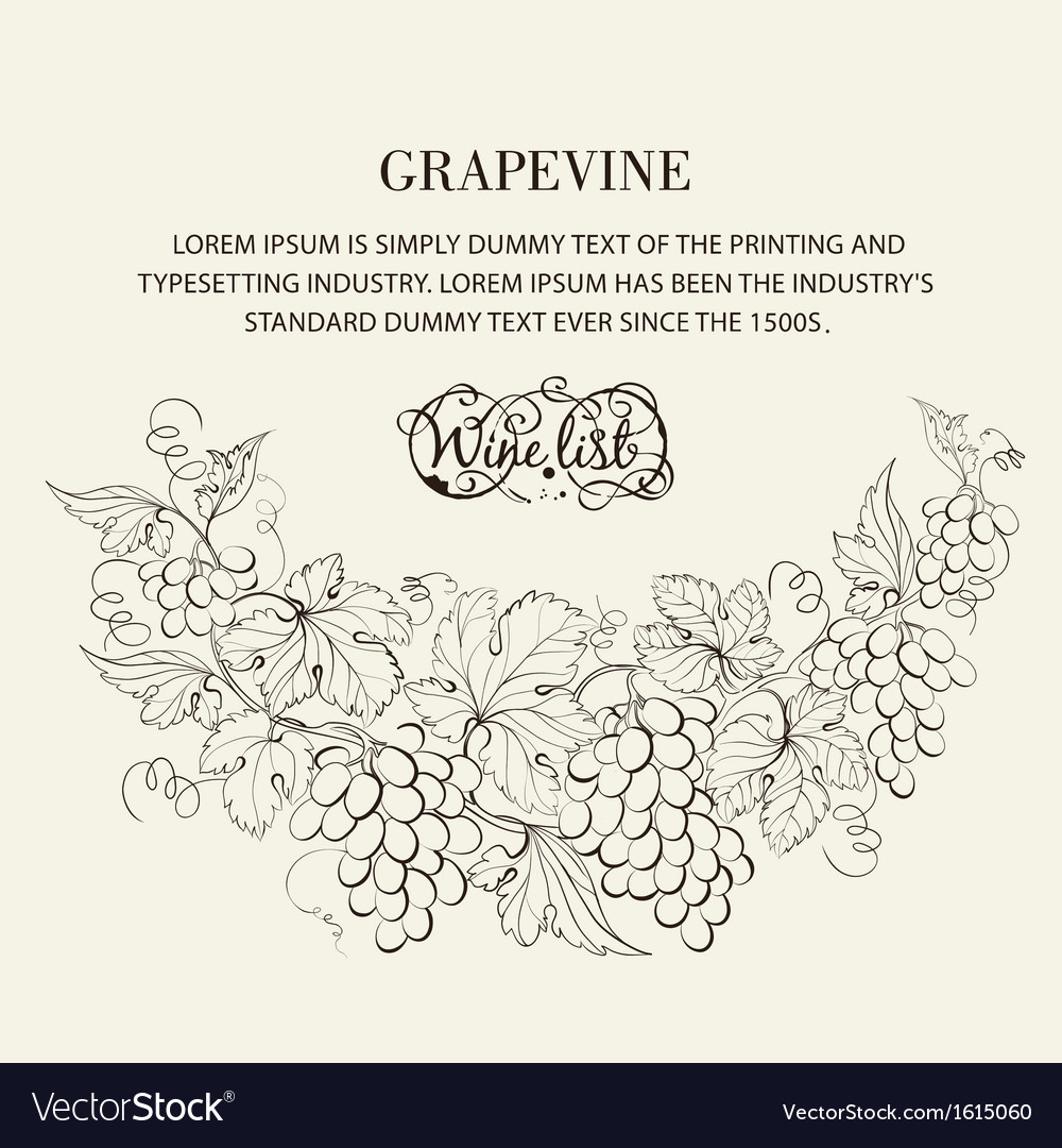 Design for wine list vector
