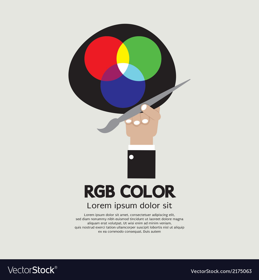 Rgb color palette vector