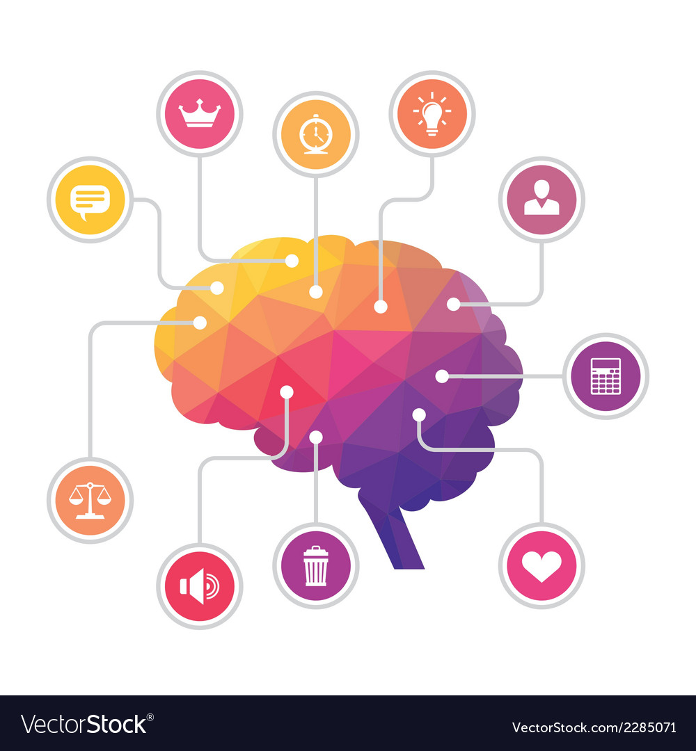Human brain  colored polygon infographic vector