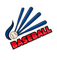 baseball equipment and word vector image