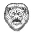 hipster lion with mustache and eyeglasses vector image