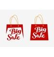 Big Sale logo Inscription written on shopping bag vector image