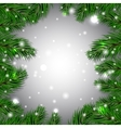 Christmas white background with green fir branches vector image