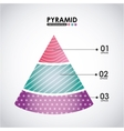pyramid infographic vector image