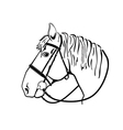 horse head in harness black and white drawing vector image