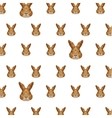 rabbit head pattern low poly isolated icon vector image