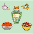 spices seasoning hand drawn style food herbs vector image