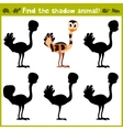Educational game for children of kindergarten and vector image