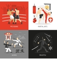 Martial Arts Concept vector image
