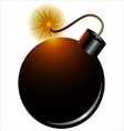 pirate bomb vector image vector image