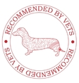 Recommended by vets with dog vector image