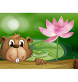 A beaver beside a pink flower vector image vector image