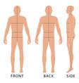 fashion man figure vector image