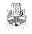hand drawn raccoon vector image