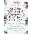 Handwritten decorative alphabet vector image