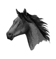 Horse races symbol sketch equine head vector image vector image