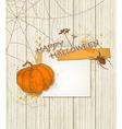 halloween spider vector image vector image