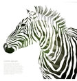 Animal of military zebra vector image