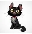 Black kitten in collar with pendant-skull vector image