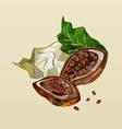 polygonal cocoa beans vector image
