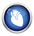 Human heart icon vector image