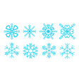 snowflakes package vector image