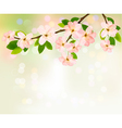Spring background with blossoming tree brunch with vector image