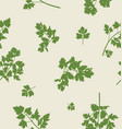 seamless pattern design with parsley leaves vector image vector image