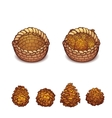 basket with the pine cones vector image