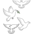 Dove collection vector image vector image