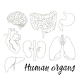 Different human organs set vector image