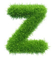 Small grass letter z on white background vector image
