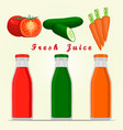 the set vegetables vector image