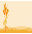 Golden Wheat Ears on Autumn Background vector image