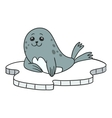 Seal on ice floes vector image